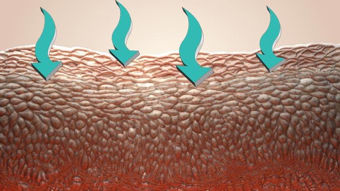 кислород в клетках кожи