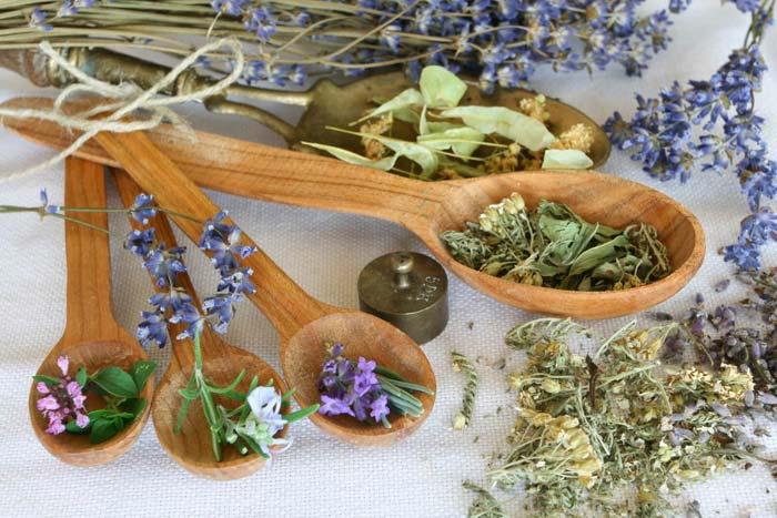 Травы для сна. Какие травы помогают от бессонницы у женщин