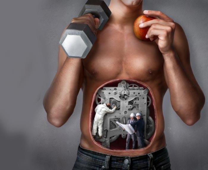 ускоренный метаболизм